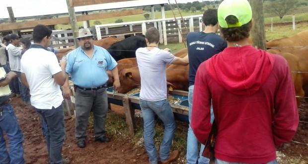 ALUNOS DA ETEC JALES PARTICIPAM DE DIA DE CAMPO SOBRE RAÇA DE GADO DE CORTE SENEPOL